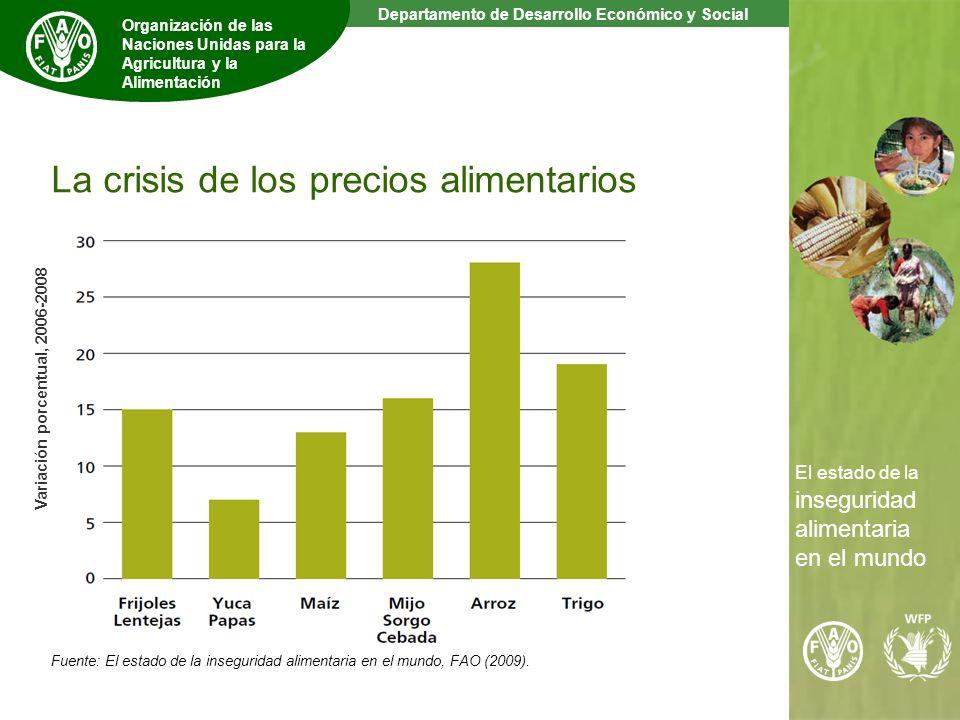 7 The State of Food Insecurity in the World Departamento de Desarrollo Económico y Social Organización de las Naciones Unidas para la Agricultura y la Alimentación El estado de la inseguridad alimentaria en el mundo La crisis de los precios alimentarios Variación porcentual, 2006-2008 Fuente: El estado de la inseguridad alimentaria en el mundo, FAO (2009).