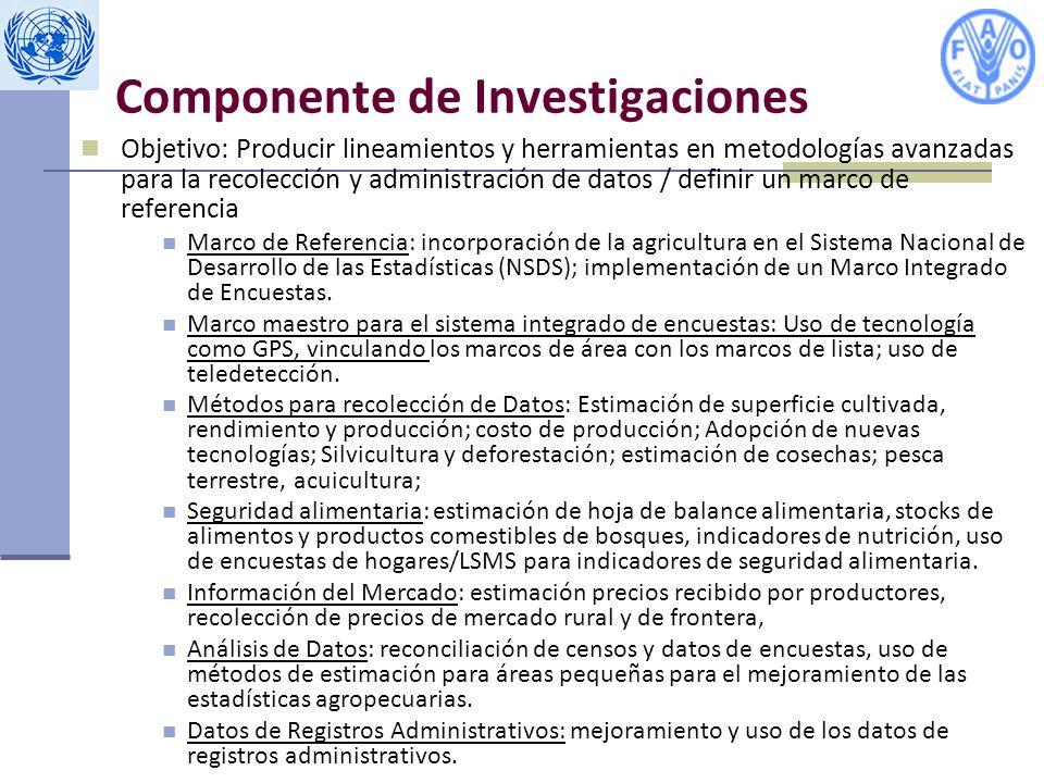 Componente de Investigaciones Objetivo: Producir lineamientos y herramientas en metodologías avanzadas para la recolección y administración de datos / definir un marco de referencia Marco de Referencia: incorporación de la agricultura en el Sistema Nacional de Desarrollo de las Estadísticas (NSDS); implementación de un Marco Integrado de Encuestas.