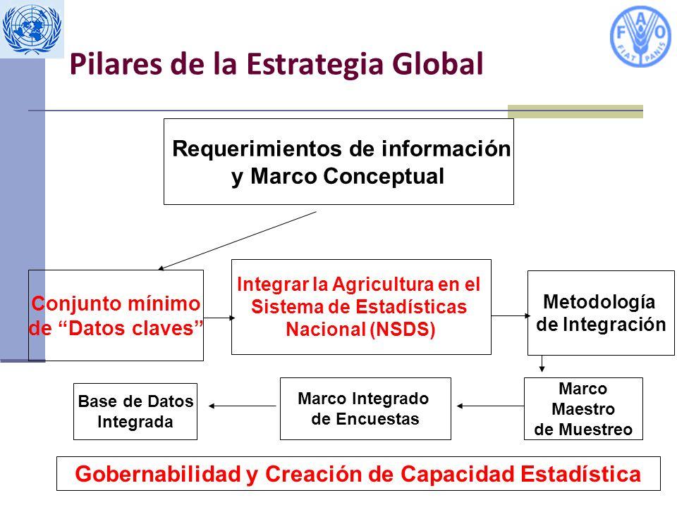 Requerimientos de información y Marco Conceptual Conjunto mínimo de Datos claves Integrar la Agricultura en el Sistema de Estadísticas Nacional (NSDS) Metodología de Integración Marco Maestro de Muestreo Base de Datos Integrada Marco Integrado de Encuestas Gobernabilidad y Creación de Capacidad Estadística Pilares de la Estrategia Global