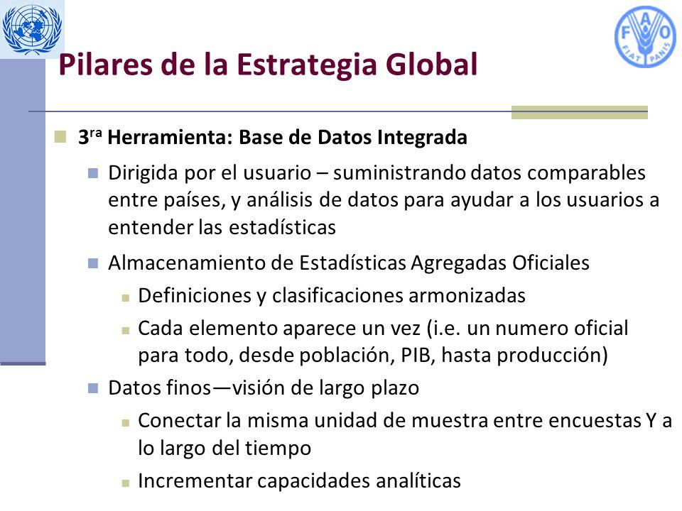 Pilares de la Estrategia Global 3 ra Herramienta: Base de Datos Integrada Dirigida por el usuario – suministrando datos comparables entre países, y análisis de datos para ayudar a los usuarios a entender las estadísticas Almacenamiento de Estadísticas Agregadas Oficiales Definiciones y clasificaciones armonizadas Cada elemento aparece un vez (i.e.