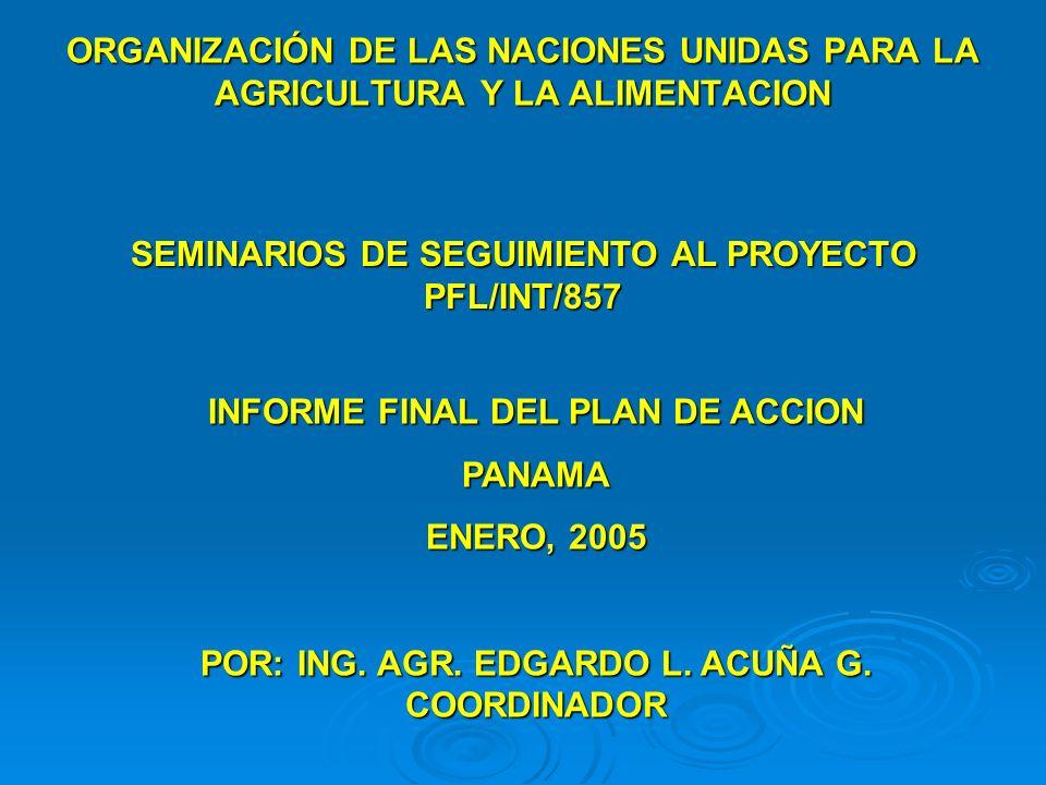 ORGANIZACIÓN DE LAS NACIONES UNIDAS PARA LA AGRICULTURA Y LA ALIMENTACION SEMINARIOS DE SEGUIMIENTO AL PROYECTO PFL/INT/857 INFORME FINAL DEL PLAN DE