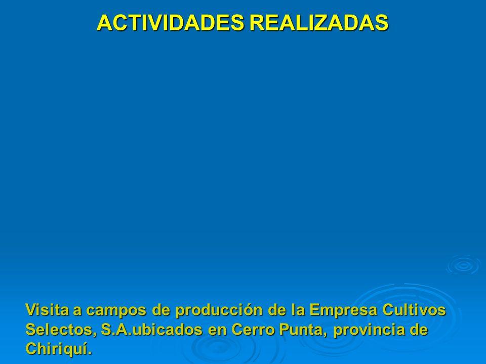 ACTIVIDADES REALIZADAS Visita a campos de producción de la Empresa Cultivos Selectos, S.A.ubicados en Cerro Punta, provincia de Chiriquí.
