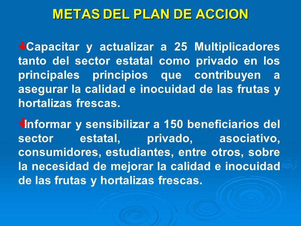 METAS DEL PLAN DE ACCION ê Capacitar y actualizar a 25 Multiplicadores tanto del sector estatal como privado en los principales principios que contrib