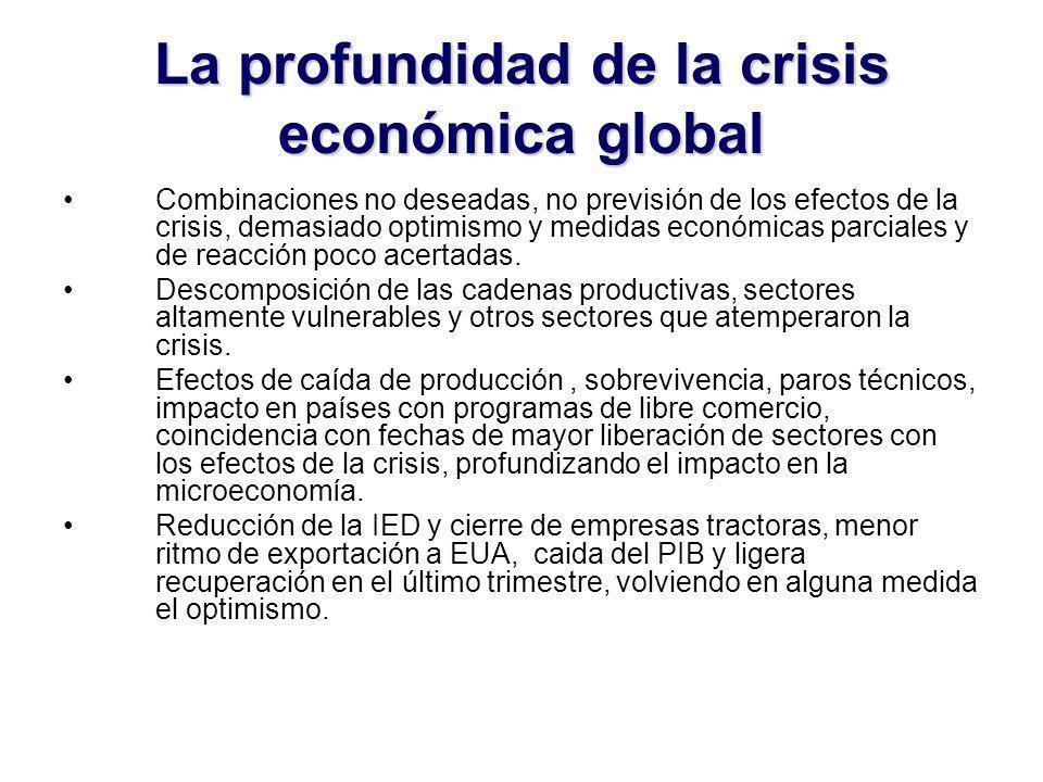 La profundidad de la crisis económica global Combinaciones no deseadas, no previsión de los efectos de la crisis, demasiado optimismo y medidas económicas parciales y de reacción poco acertadas.