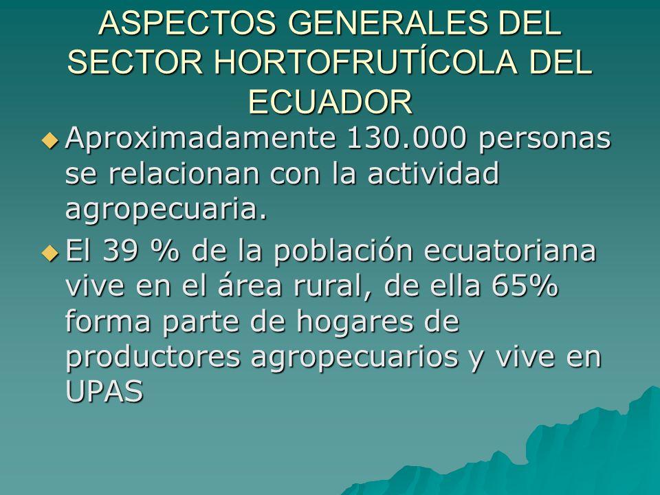 ASPECTOS GENERALES DEL SECTOR HORTOFRUTÍCOLA DEL ECUADOR En el área Rural el 60% de la población económicamente activa desarrolla actividades relacionadas con el sector agropecuario.