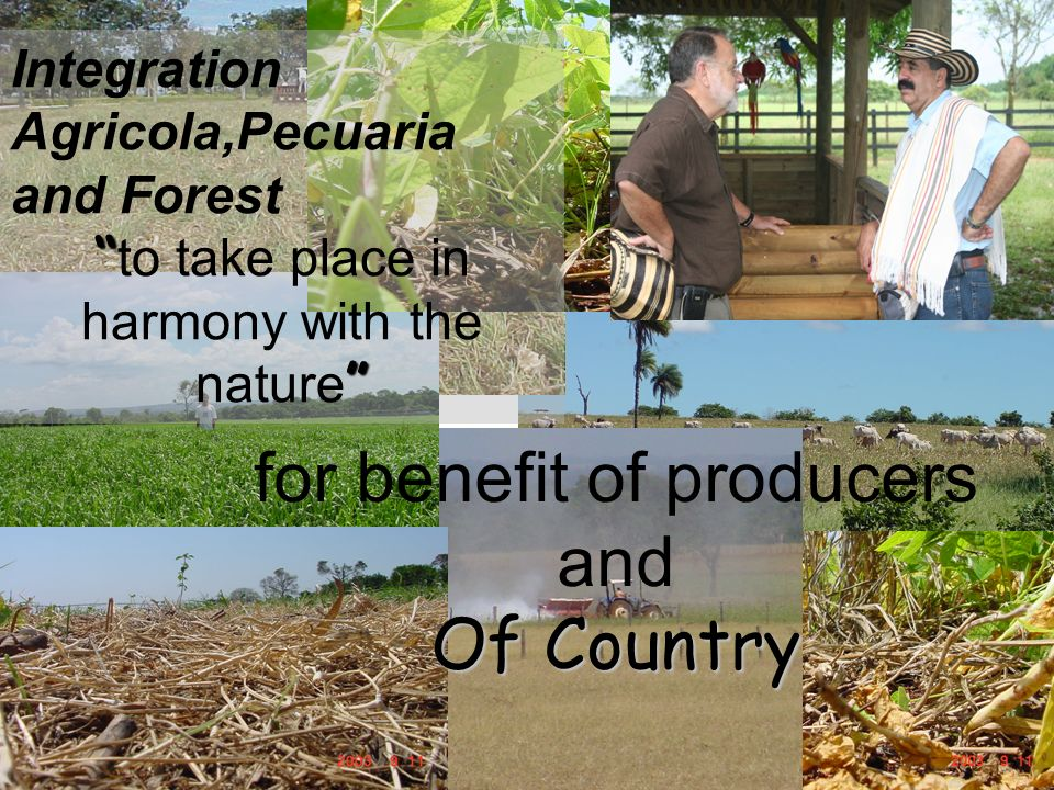 Integration Agricola,Pecuaria and Forest to take place in harmony with the nature for benefit of producers and Of Country