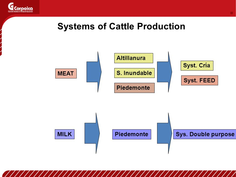 MEAT Syst. Cría Altillanura S. Inundable Piedemonte Syst. FEED MILK Sys. Double purpose Piedemonte Systems of Cattle Production