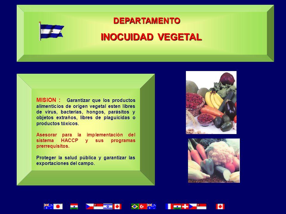 DIRECCION DE SANIDAD VEGETAL Y SEMILLAS La Dirección de Sanidad Vegetal y Semillas de la Dirección General de Protección y Sanidad Agropecuaria (DGPSA