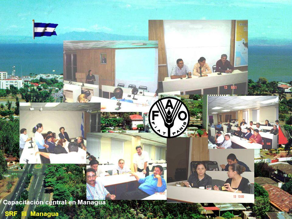 Delegaciones de Sanidad Vegetal y Semillas: SRF III Managua