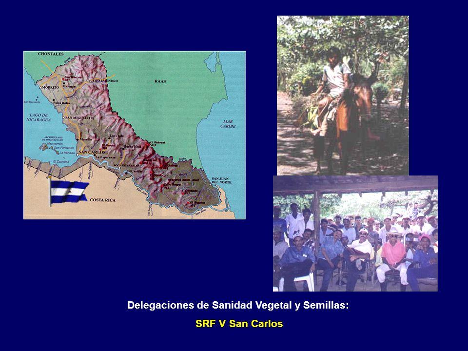Delegaciones de Sanidad Vegetal y Semillas: SRF V Nueva Guinea