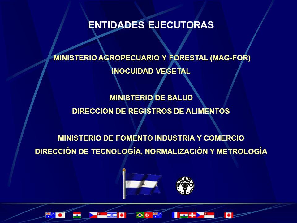 GOBIERNO DE NICARAGUA GOBIERNO DE NICARAGUA MINISTERIO AGROPECUARIO Y FORESTAL MINISTERIO AGROPECUARIO Y FORESTAL DIRECCION GENERAL DE PROTECCION Y SA