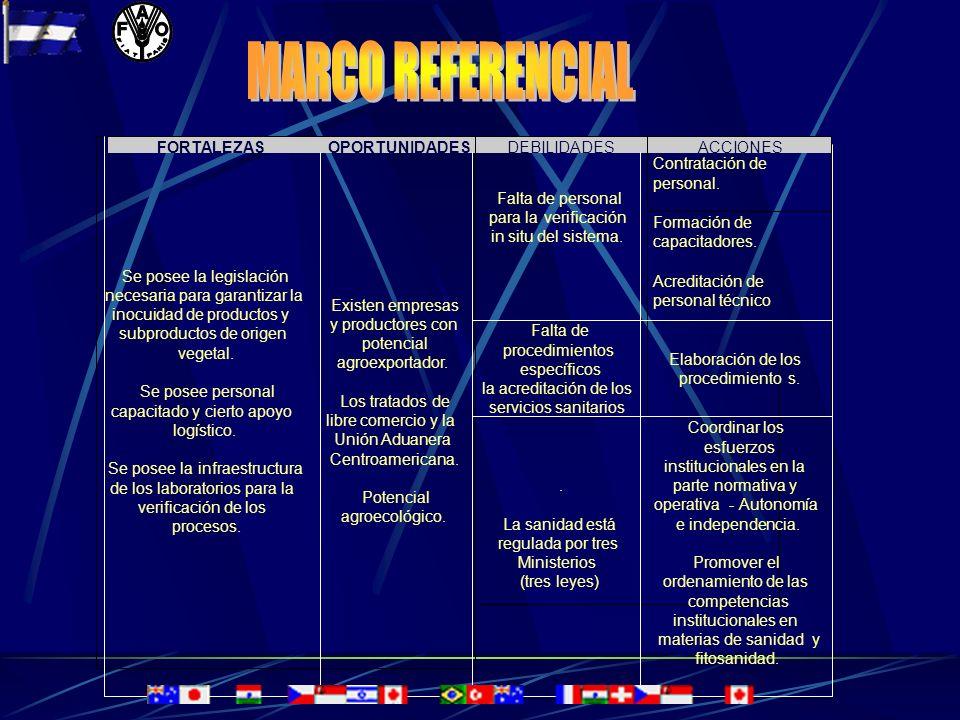 ENTIDADES EJECUTORAS MINISTERIO AGROPECUARIO Y FORESTAL (MAG-FOR) INOCUIDAD VEGETAL MINISTERIO DE SALUD DIRECCION DE REGISTROS DE ALIMENTOS MINISTERIO