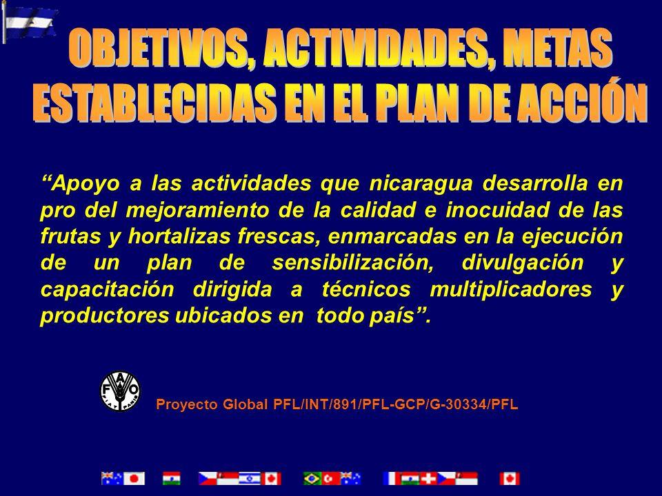 FORTALEZAS OPORTUNIDADES DEBILIDADES ACCIONES Buscar la sostenibilidad.- Generación de recursos a través de convenios entre sector privado y publico.