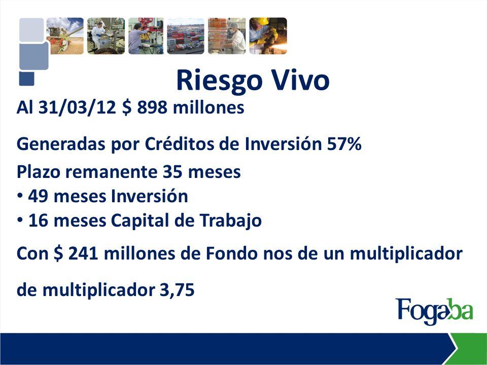 Al 31/03/12 $ 898 millones Generadas por Créditos de Inversión 57% Plazo remanente 35 meses 49 meses Inversión 16 meses Capital de Trabajo Con $ 241 m