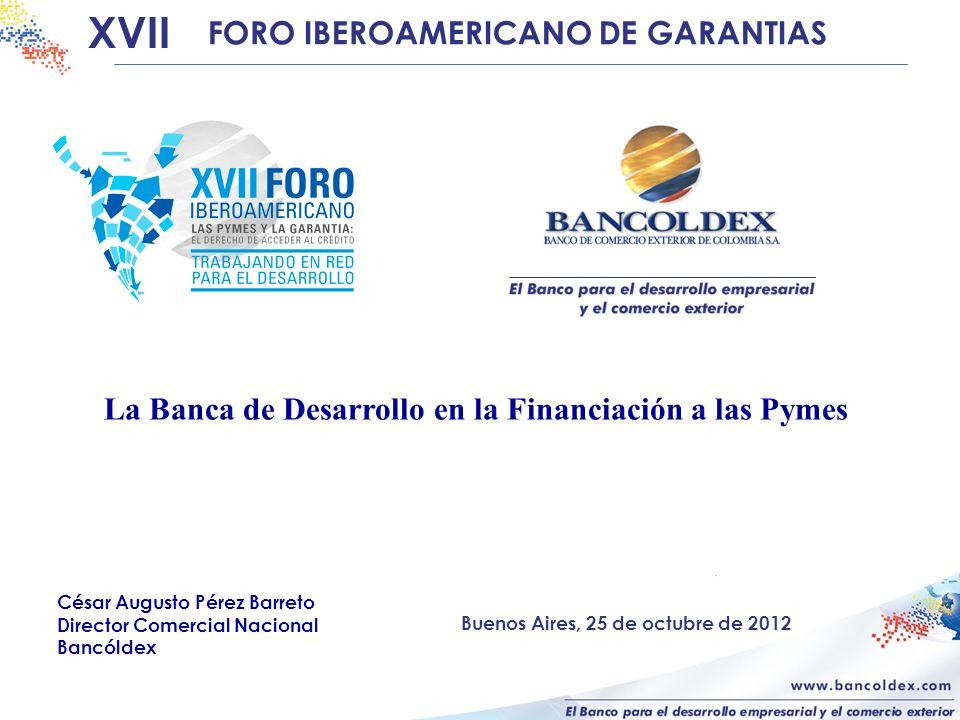 La Banca de Desarrollo en la Financiación a las Pymes XVII FORO IBEROAMERICANO DE GARANTIAS César Augusto Pérez Barreto Director Comercial Nacional Bancóldex Buenos Aires, 25 de octubre de 2012