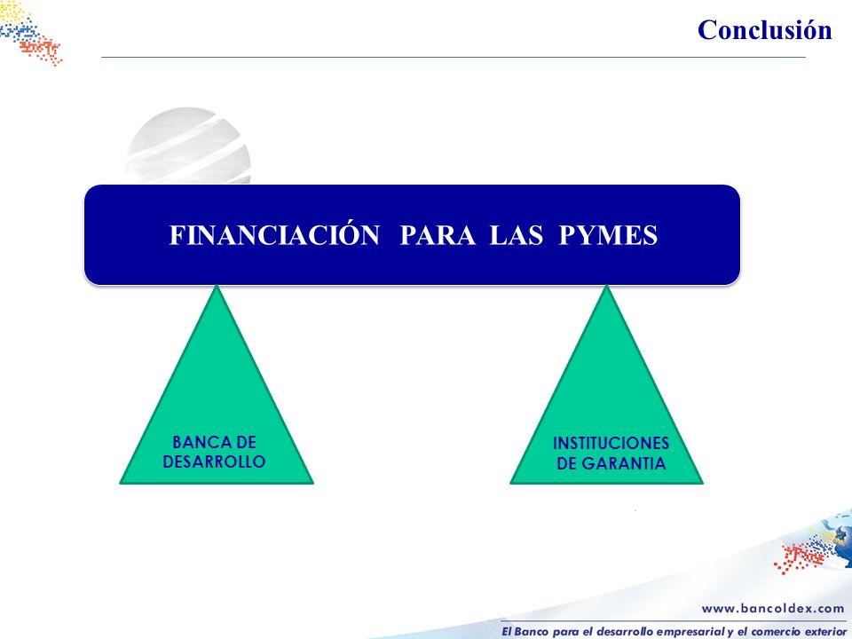 BANCA DE DESARROLLO INSTITUCIONES DE GARANTIA FINANCIACIÓN PARA LAS PYMES Conclusión