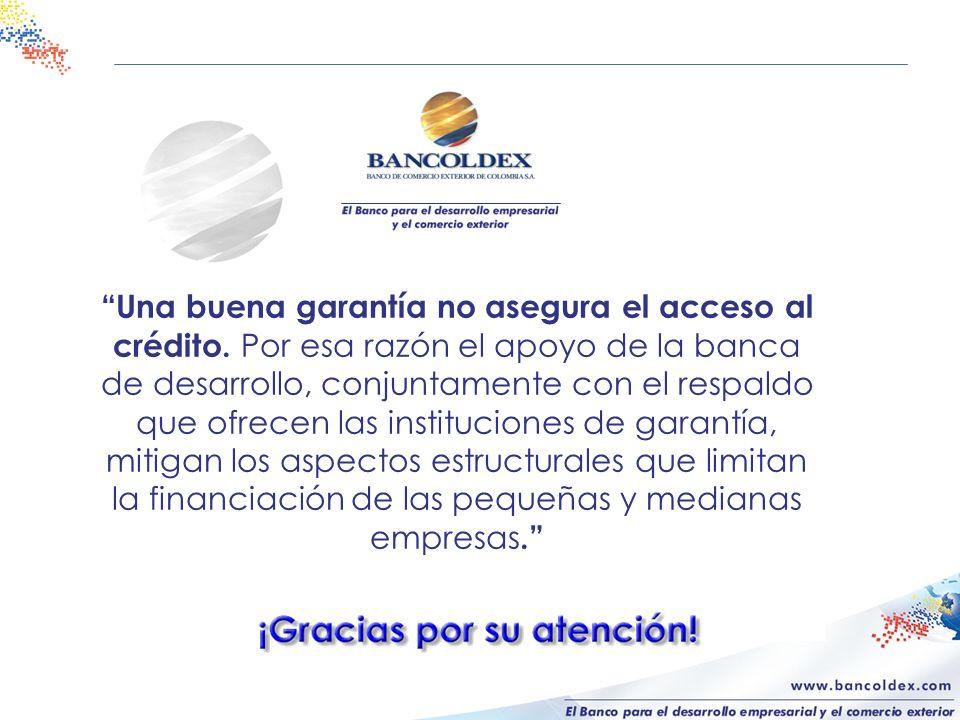 Una buena garantía no asegura el acceso al crédito. Por esa razón el apoyo de la banca de desarrollo, conjuntamente con el respaldo que ofrecen las in