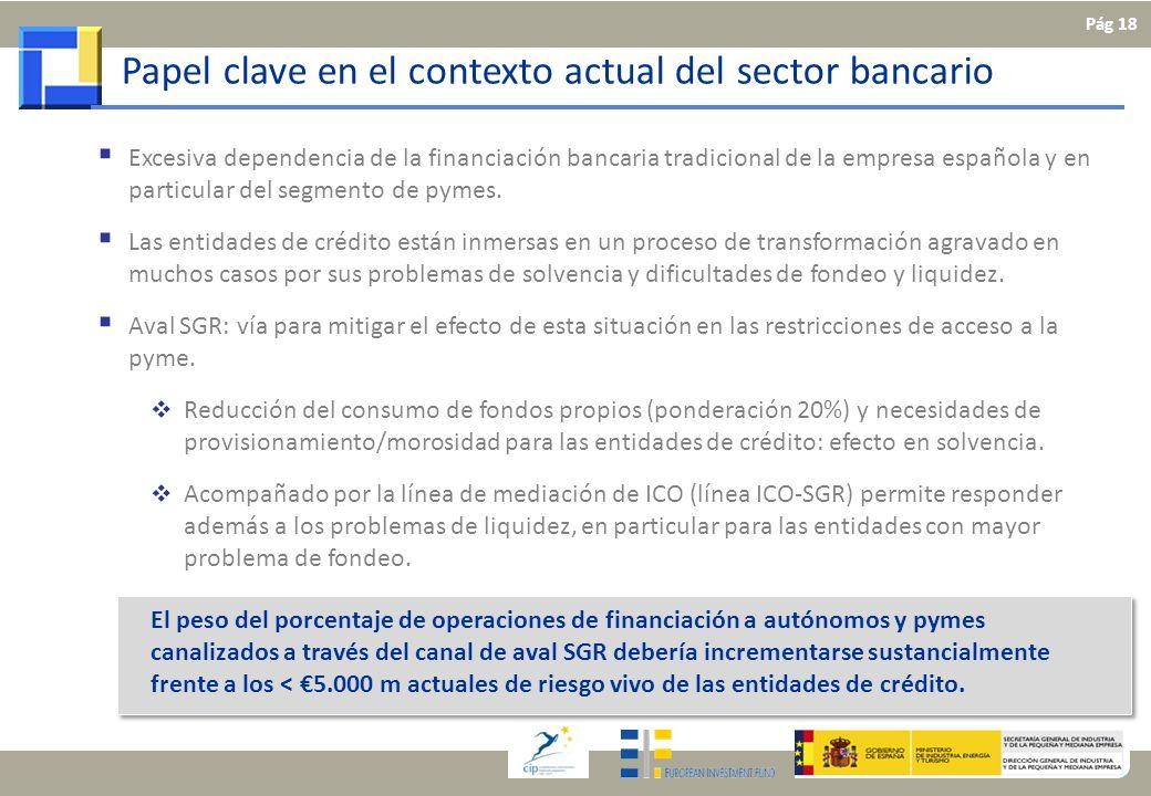 Papel clave en el contexto actual del sector bancario Excesiva dependencia de la financiación bancaria tradicional de la empresa española y en particu