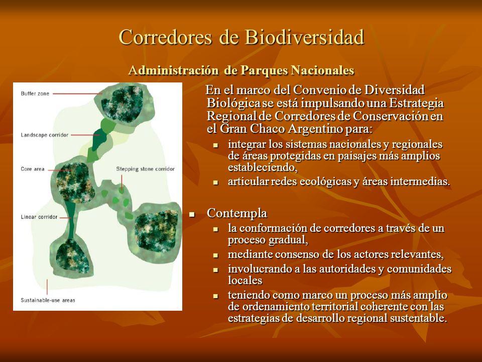 Corredores de Biodiversidad Administración de Parques Nacionales En el marco del Convenio de Diversidad Biológica se está impulsando una Estrategia Re