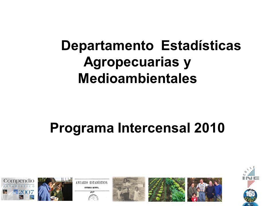 Departamento Estadísticas Agropecuarias y Medioambientales Programa Intercensal 2010
