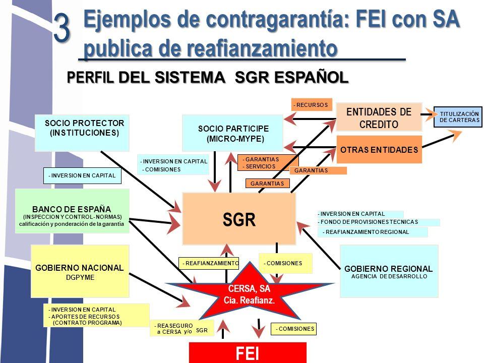 SOCIO PROTECTOR (INSTITUCIONES) SOCIO PARTICIPE (MICRO-MYPE) ENTIDADES DE CREDITO SGR GOBIERNO REGIONAL AGENCIA DE DESARROLLO GOBIERNO NACIONAL DGPYME