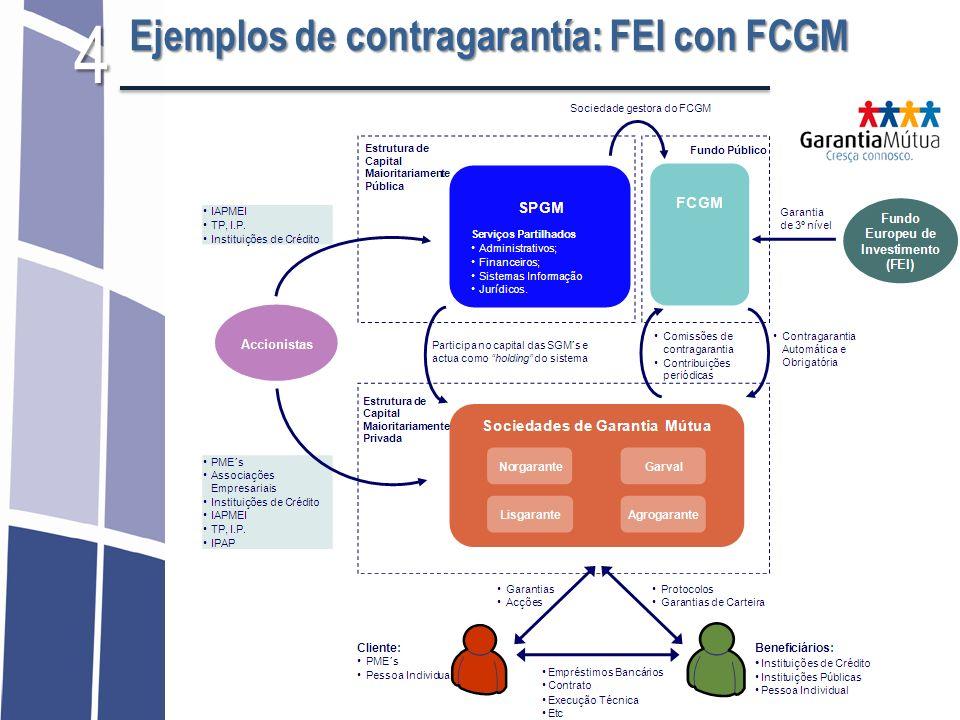 Ejemplos de contragarantía: FEI con FCGM 4