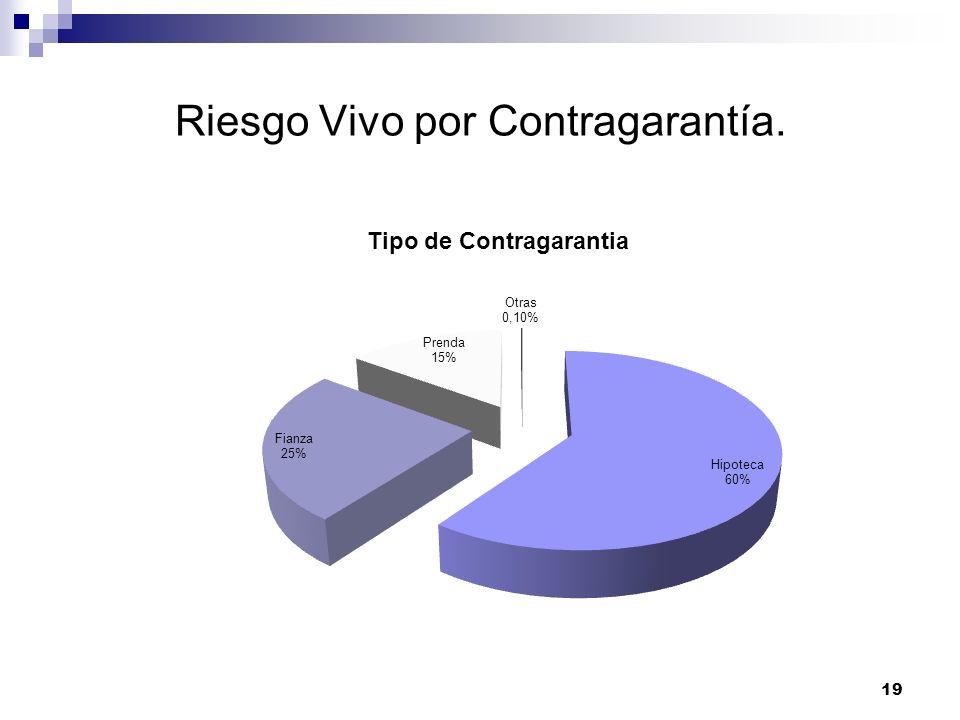 Riesgo Vivo por Contragarantía. 19