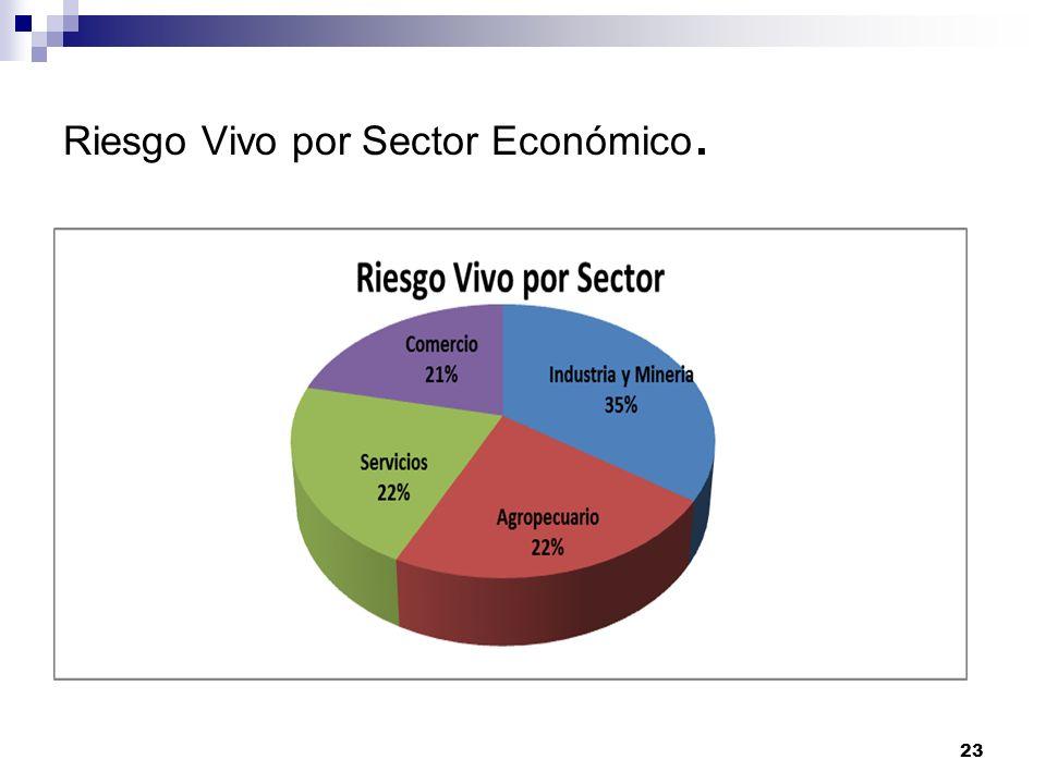 Riesgo Vivo por Sector Económico. 23