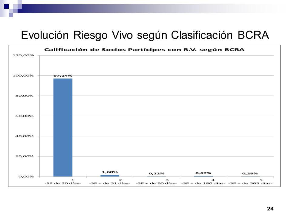 Evolución Riesgo Vivo según Clasificación BCRA 24