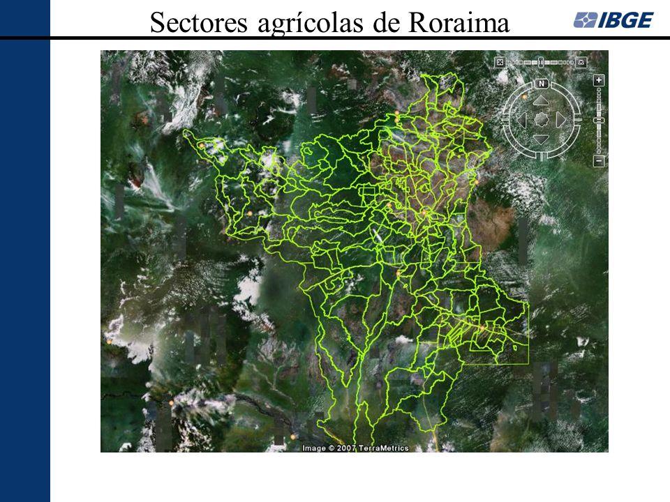 Sectores agrícolas de Roraima
