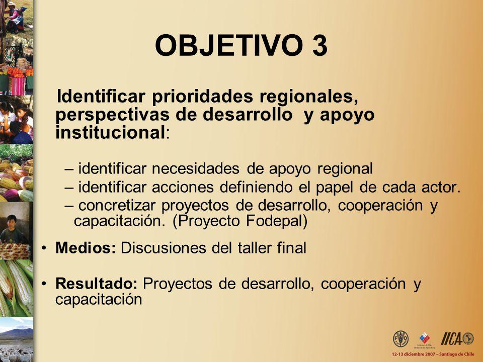 OBJETIVO 3 Identificar prioridades regionales, perspectivas de desarrollo y apoyo institucional: – identificar necesidades de apoyo regional – identif