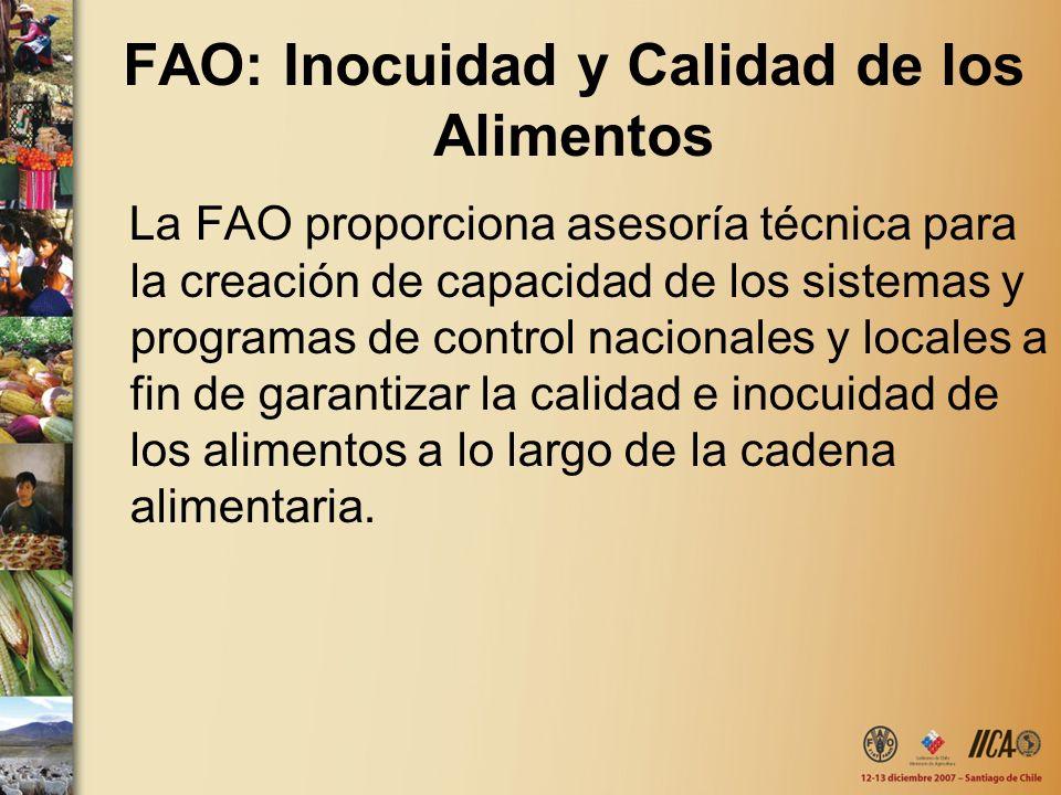 FAO: Inocuidad y Calidad de los Alimentos La FAO proporciona asesoría técnica para la creación de capacidad de los sistemas y programas de control nac