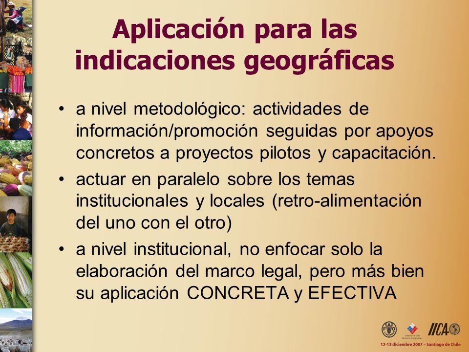 Aplicación para las indicaciones geográficas a nivel metodológico: actividades de información/promoción seguidas por apoyos concretos a proyectos pilo