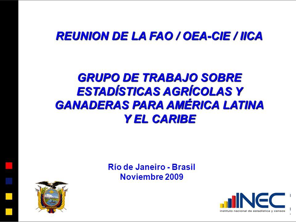 REUNION DE LA FAO / OEA-CIE / IICA GRUPO DE TRABAJO SOBRE ESTADÍSTICAS AGRÍCOLAS Y GANADERAS PARA AMÉRICA LATINA Y EL CARIBE Río de Janeiro - Brasil Noviembre 2009