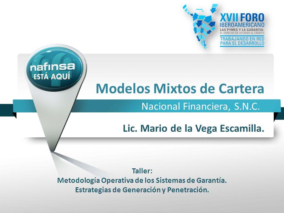 Nacional Financiera, S.N.C. Modelos Mixtos de Cartera Taller: Metodología Operativa de los Sistemas de Garantía. Estrategias de Generación y Penetraci