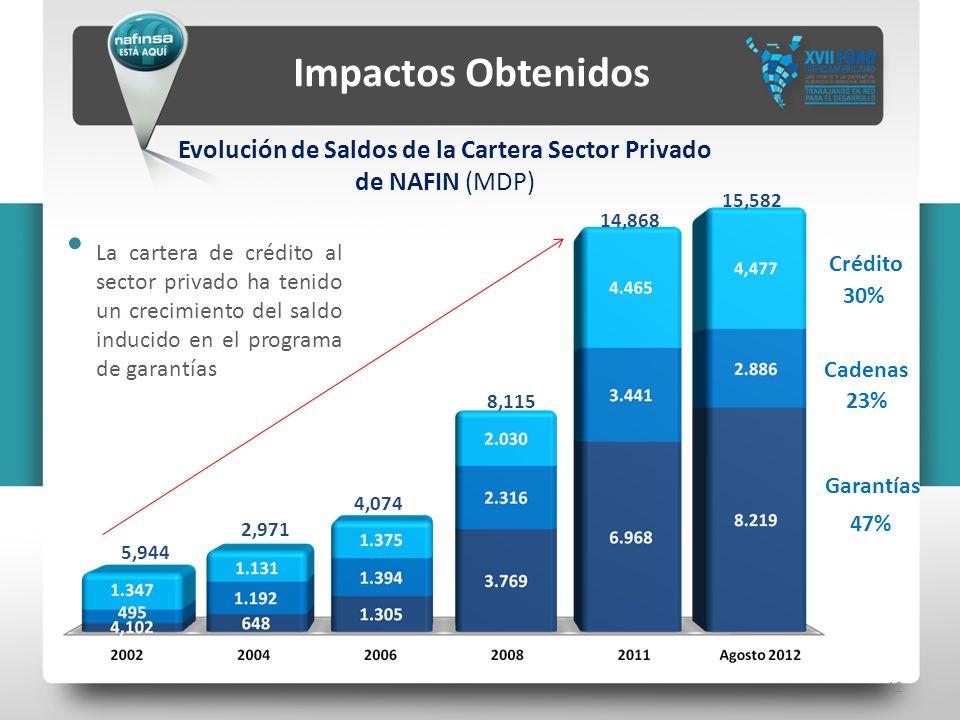 12 Impactos Obtenidos Evolución de Saldos de la Cartera Sector Privado de NAFIN (MDP) 2,971 8,115 4,074 5,944 14,868 Garantías Cadenas Crédito 47% 23%