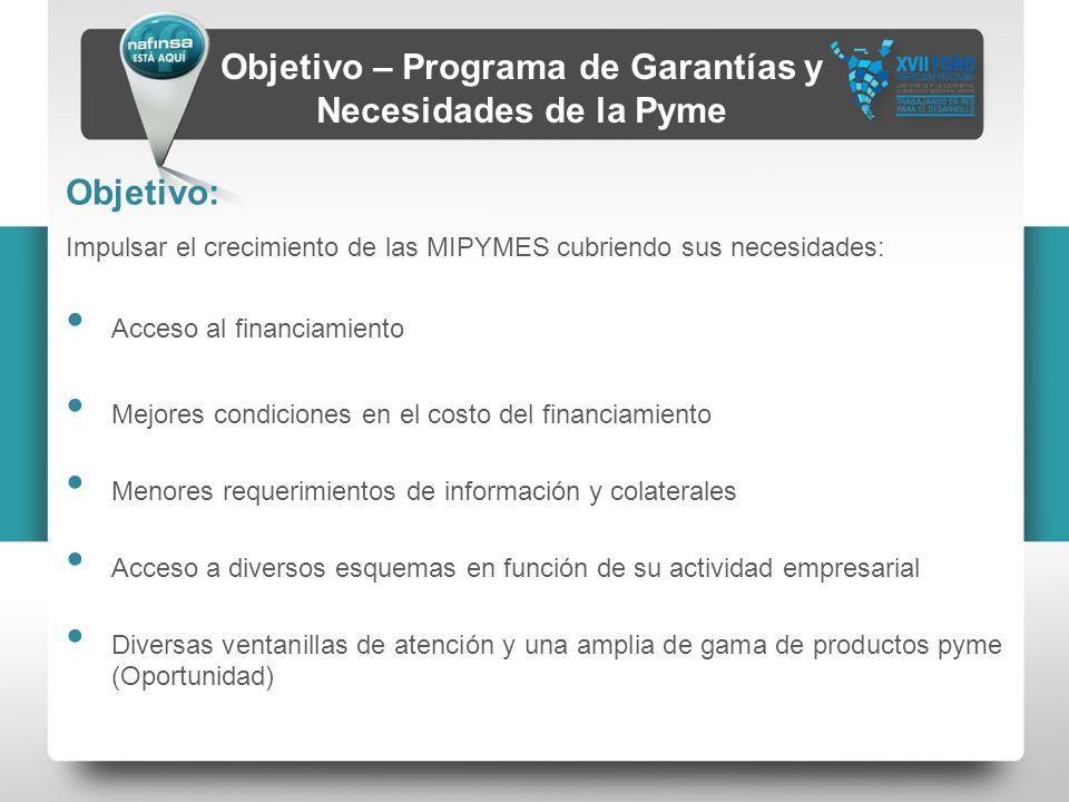 Objetivo – Programa de Garantías y Necesidades de la Pyme Objetivo: Impulsar el crecimiento de las MIPYMES cubriendo sus necesidades: Acceso al financ