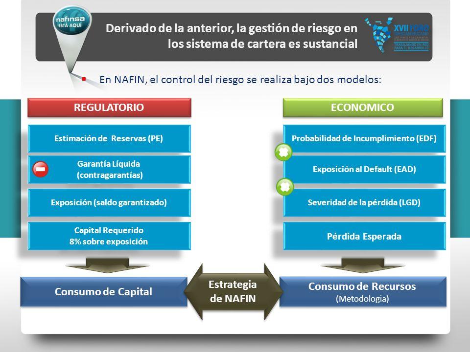 Derivado de la anterior, la gestión de riesgo en los sistema de cartera es sustancial En NAFIN, el control del riesgo se realiza bajo dos modelos: Con