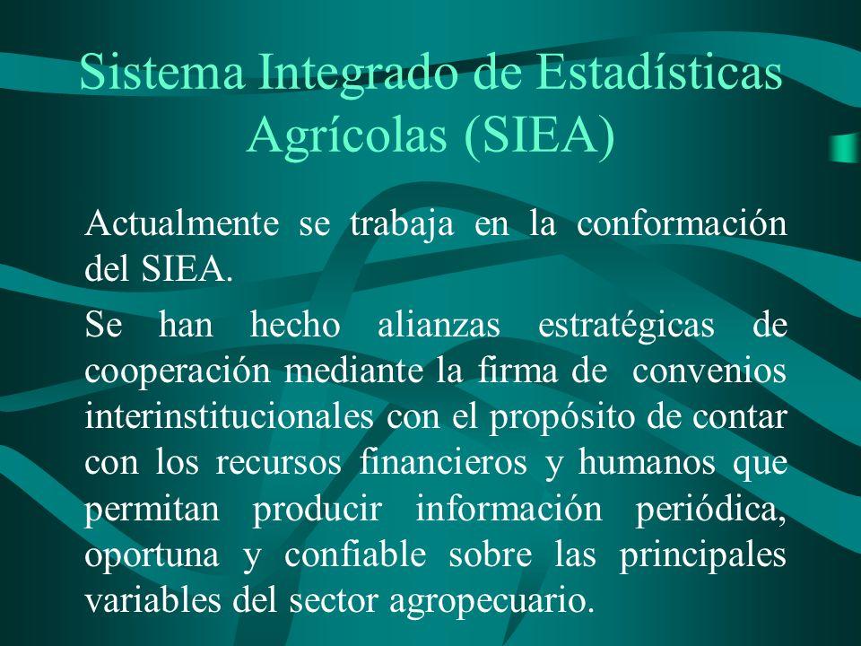 Sistema Integrado de Estadísticas Agrícolas (SIEA) Actualmente se trabaja en la conformación del SIEA.