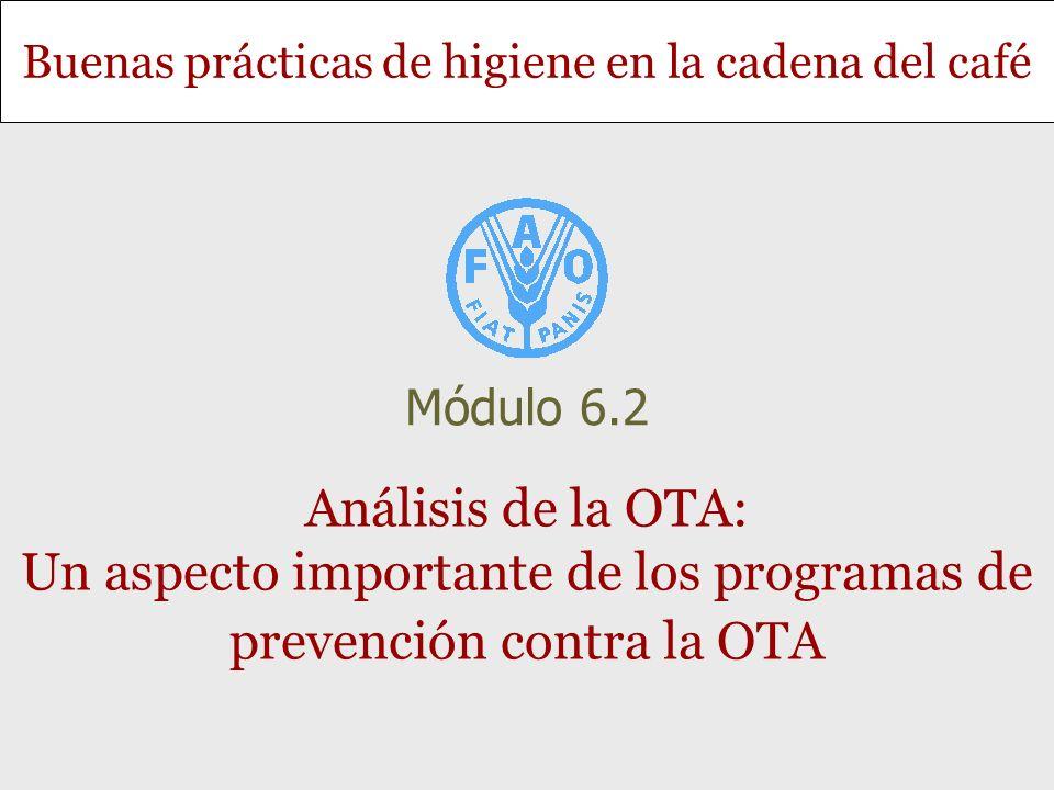 Buenas prácticas de higiene en la cadena del café Análisis de la OTA: Un aspecto importante de los programas de prevención contra la OTA Módulo 6.2