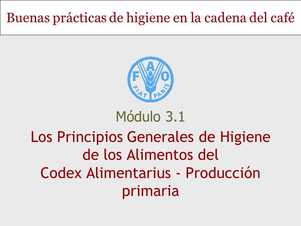 Diapositiva 2 Módulo 3.1 - Los Principios Generales de Higiene de los Alimentos del Codex Alimentarius - Producción primaria Objetivos Presentar la importancia de reconocer y controlar los peligros para la inocuidad de los alimentos en la producción primaria, con referencia específica a la cadena del café Determinar los pasos de la producción primaria del café en los cuales las medidas de control pueden prevenir los peligros para la inocuidad de los alimentos Establecer la función del gobierno y la importancia del Codex Alimentarius en la lucha contra los contaminantes y otras sustancias inconvenientes en los alimentos