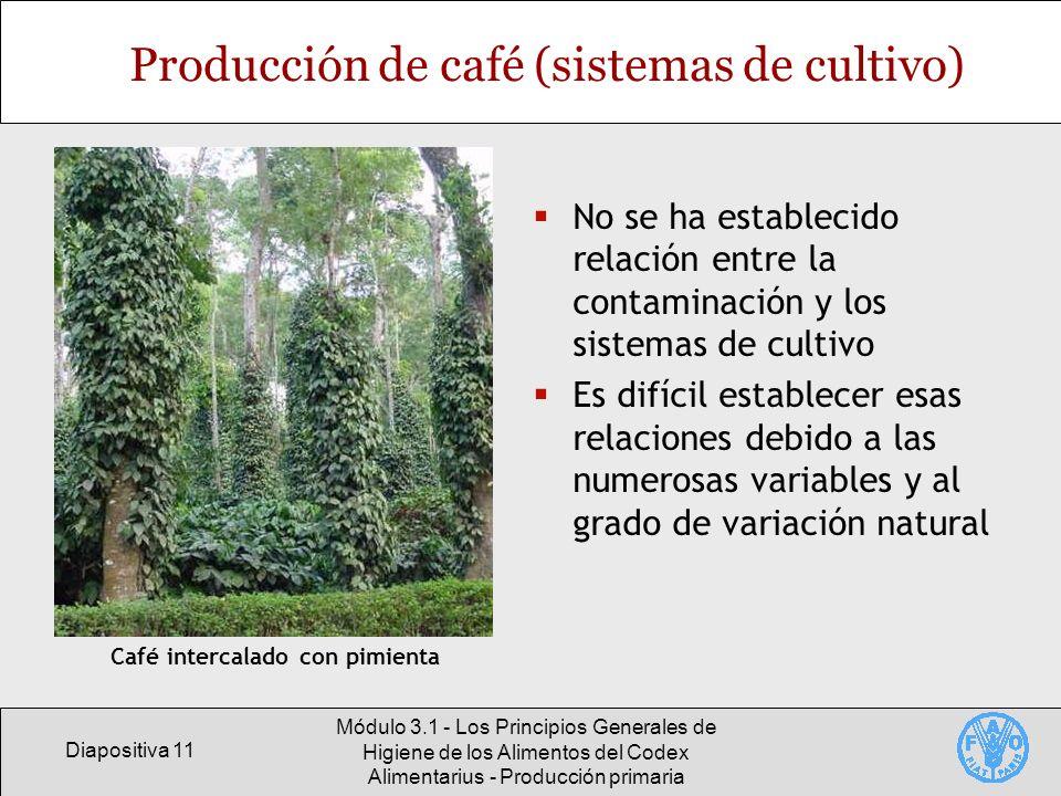 Diapositiva 11 Módulo 3.1 - Los Principios Generales de Higiene de los Alimentos del Codex Alimentarius - Producción primaria Producción de café (sist