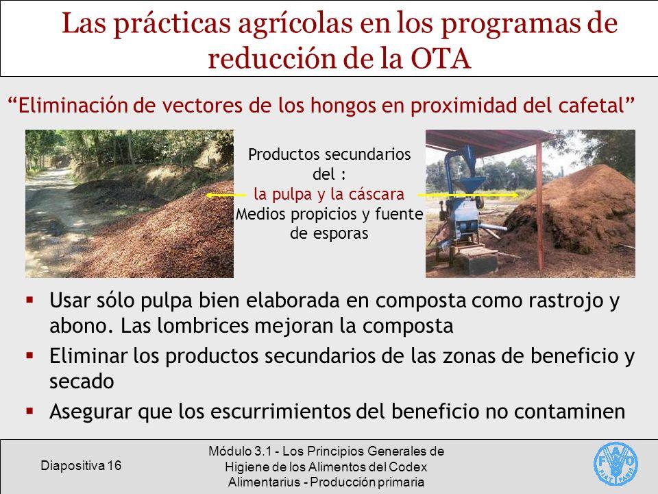 Diapositiva 16 Módulo 3.1 - Los Principios Generales de Higiene de los Alimentos del Codex Alimentarius - Producción primaria Las prácticas agrícolas