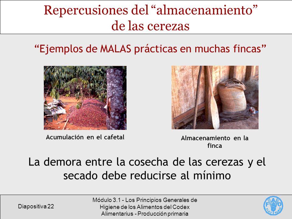 Diapositiva 22 Módulo 3.1 - Los Principios Generales de Higiene de los Alimentos del Codex Alimentarius - Producción primaria Repercusiones del almace