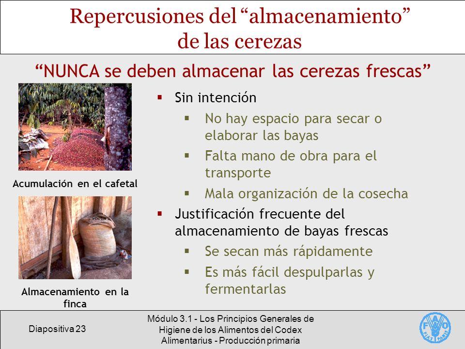 Diapositiva 23 Módulo 3.1 - Los Principios Generales de Higiene de los Alimentos del Codex Alimentarius - Producción primaria Repercusiones del almace