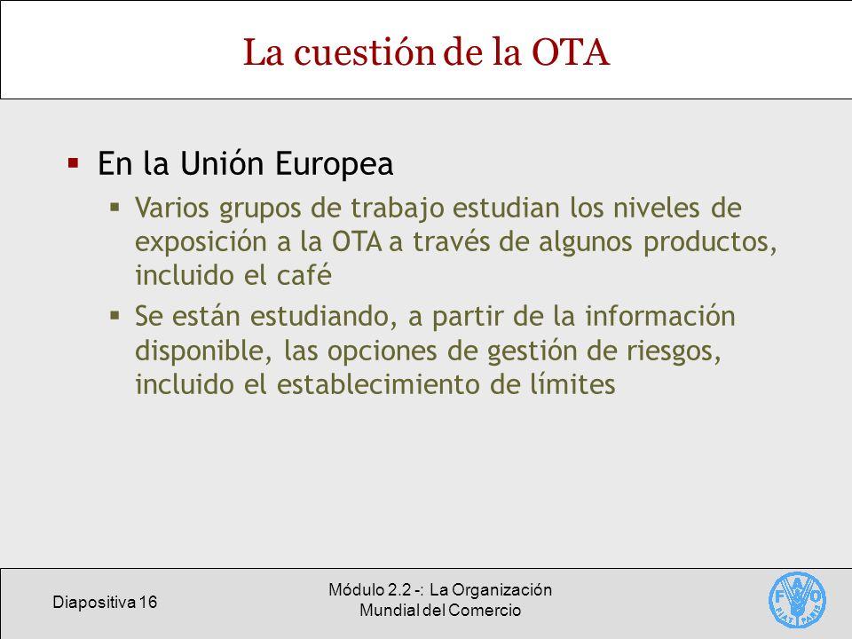 Diapositiva 16 Módulo 2.2 -: La Organización Mundial del Comercio La cuestión de la OTA En la Unión Europea Varios grupos de trabajo estudian los nive