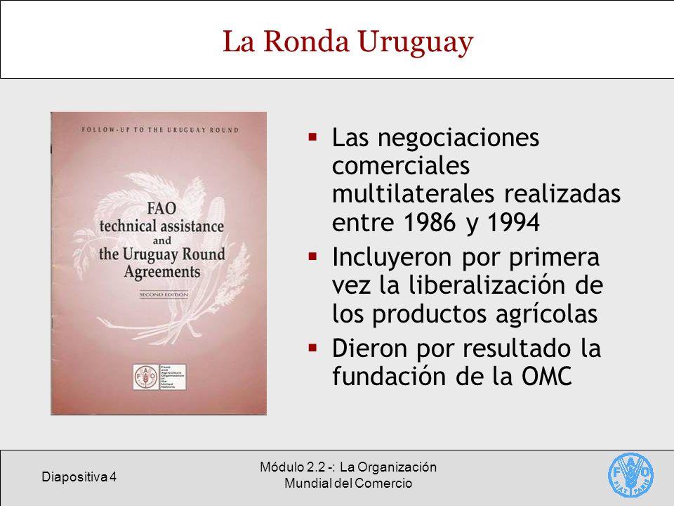 Diapositiva 4 Módulo 2.2 -: La Organización Mundial del Comercio La Ronda Uruguay Las negociaciones comerciales multilaterales realizadas entre 1986 y