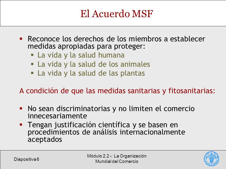 Diapositiva 6 Módulo 2.2 -: La Organización Mundial del Comercio El Acuerdo MSF Reconoce los derechos de los miembros a establecer medidas apropiadas