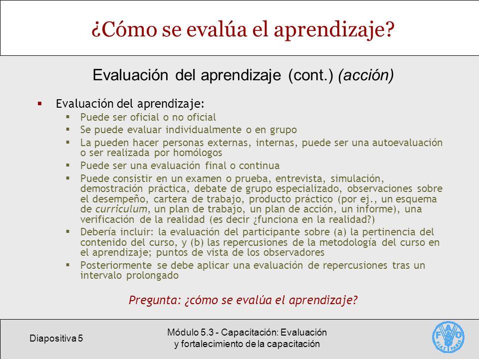 Diapositiva 5 Módulo 5.3 - Capacitación: Evaluación y fortalecimiento de la capacitación ¿Cómo se evalúa el aprendizaje? Evaluación del aprendizaje: P