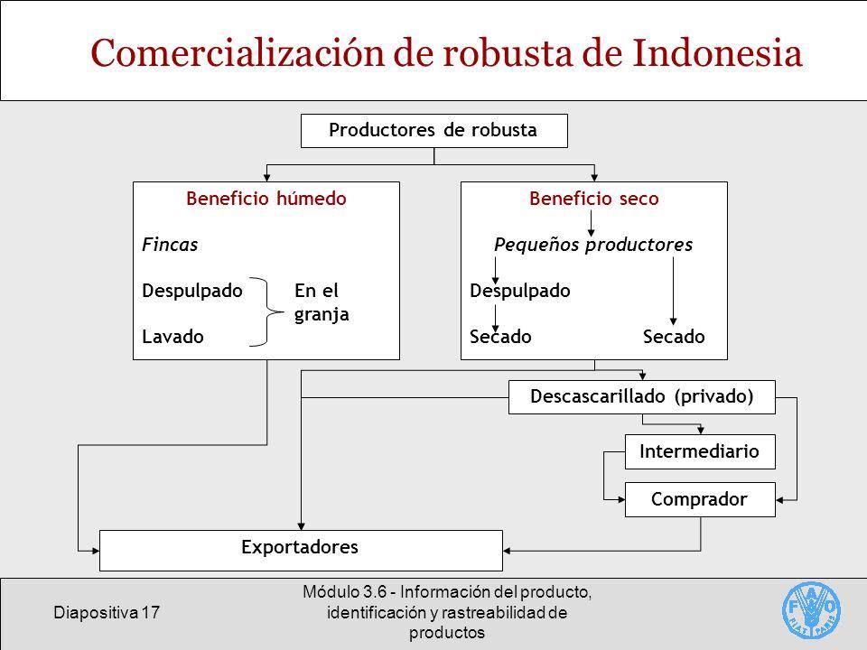Diapositiva 17 Módulo 3.6 - Información del producto, identificación y rastreabilidad de productos Comercialización de robusta de Indonesia Productore